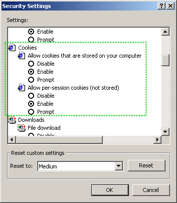 Internet Options - Custom Level... configuration dialog